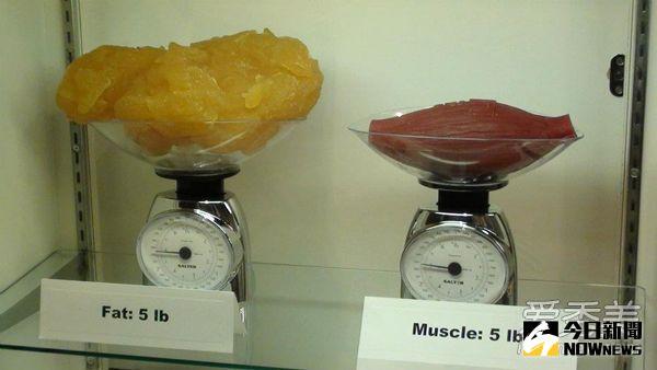 減肥≠減重
