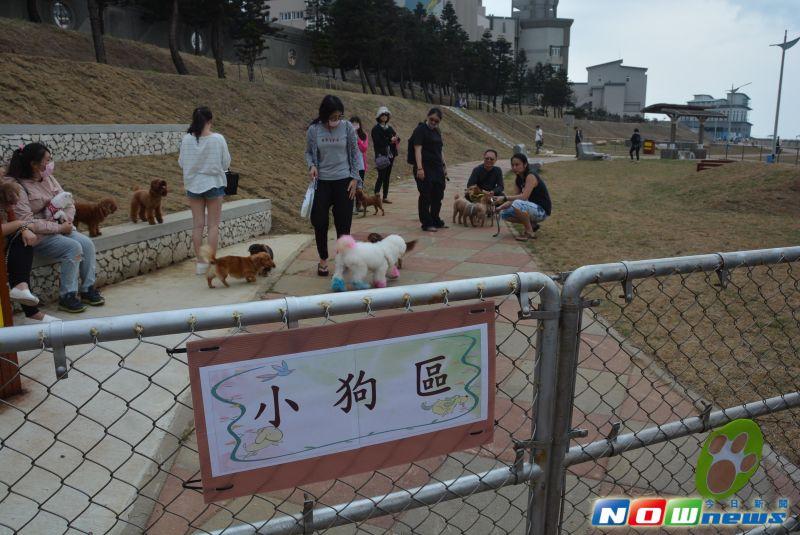 ▲毛小孩活動區遊憩空間,今(31)日舉行啟用儀式。(圖/記者鄧至傑攝)