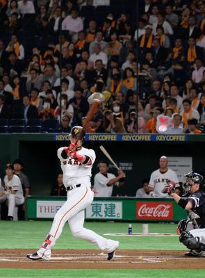 效力日本職棒東京讀賣巨人隊的台灣外野手陽岱鋼,今天達成生涯出賽1000場紀錄。圖為陽岱鋼上場打擊。中央社記者黃名璽東京攝 106年6月13日