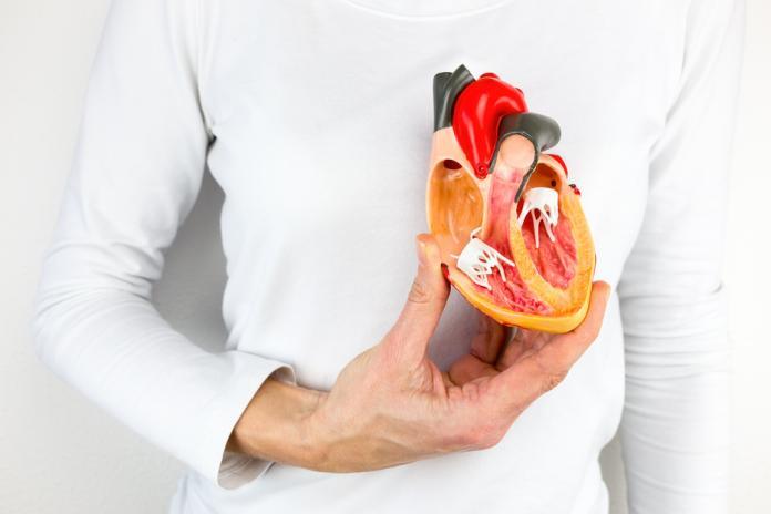 寒流來襲!醫師教戰「4步驟」防止心血管疾病
