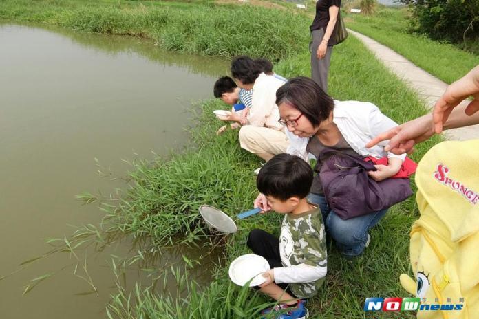 ▲為推廣濕地環境教育,台北市環保局將在 106 年 7 月 28 日(星期五)舉辦「探索水棲生物」與「水生植物知多少」體驗學習活動,即日起接受報名,每場次限30 個名額,歡迎親子大手牽小手一起報名參加。(圖/北市環保局提供)
