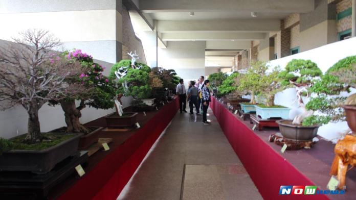雲林樹石藝術展覽會 <b>斗六棒球場</b>展出