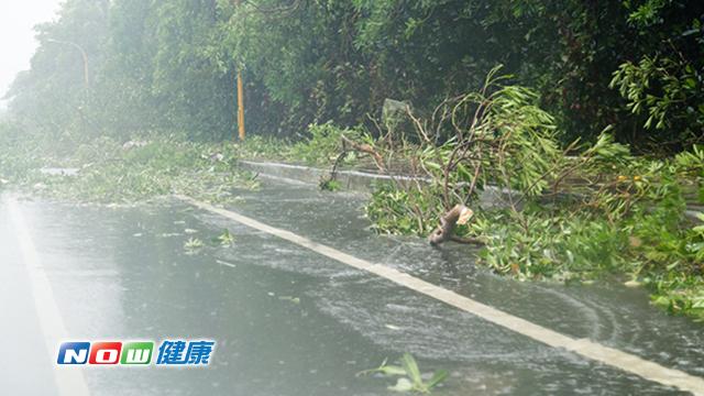 颱風過後清理家園不打赤腳 以防感染三大疾病