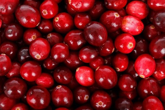 ▲許多民眾認為多吃蔓越莓或含蔓越莓相關產品能防泌尿道感染。(圖/翻攝自Pixabay圖庫)