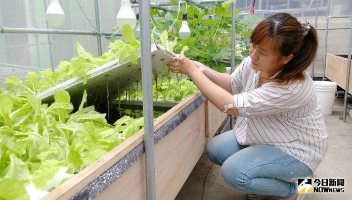 台南綠能科技產業培育、職訓計畫 25日舉行成果展
