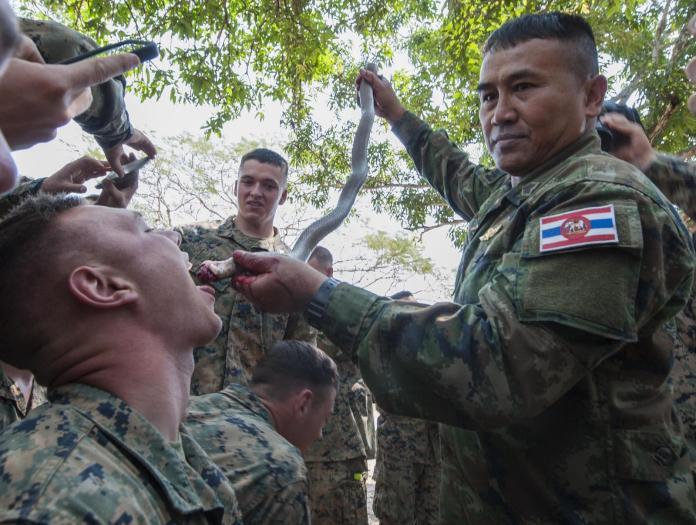 ▲美泰聯合主辦金色眼鏡蛇演習是東南亞最大軍演,美軍會在演習中向泰軍學習求生技巧。(圖/美國海軍陸戰隊))