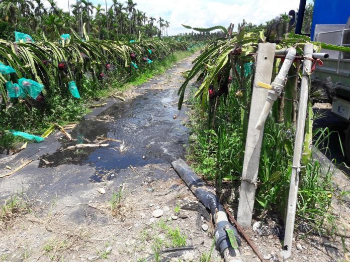 肥水不落外人田 屏推畜牧沼液灌溉農田獲成效