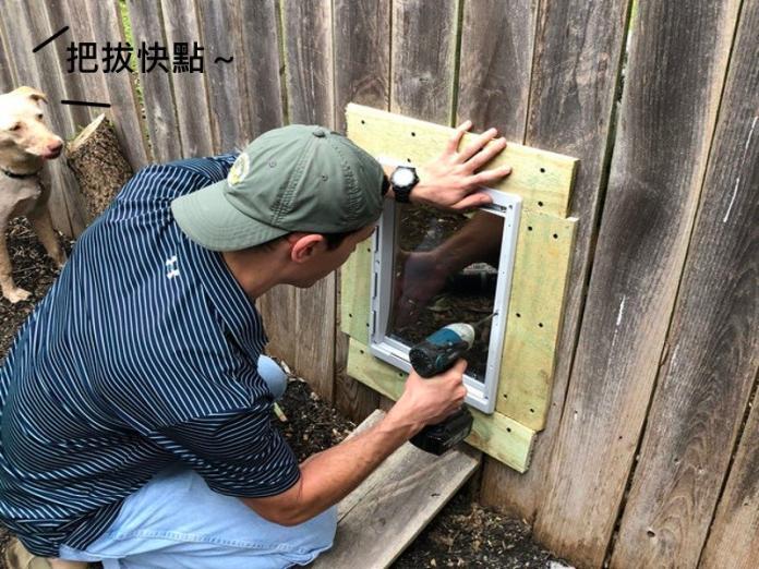 圍籬隔開二隻狗狗好朋友 貼心主人索性裝狗門和鄰居分享院子!(圖/寵毛網)