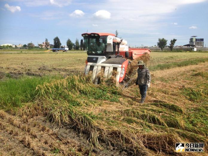 臺中區農業改良場 籲請農友提前做好<b>防颱準備</b>工作
