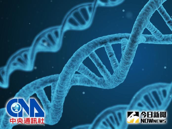 中央社 健康 / NOWnews