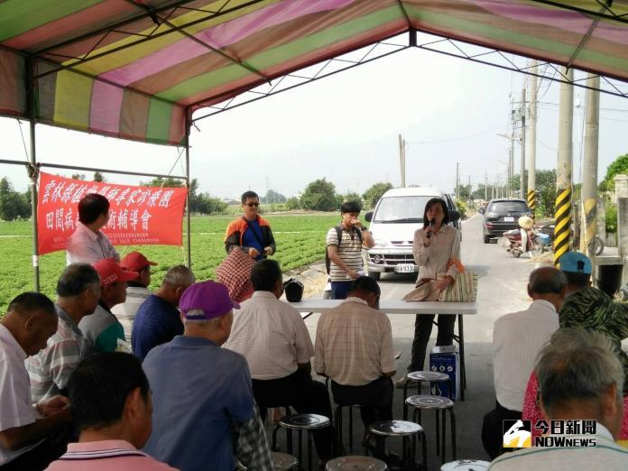 <b>落花生</b>田間病蟲害防治 農友及專家經驗分享