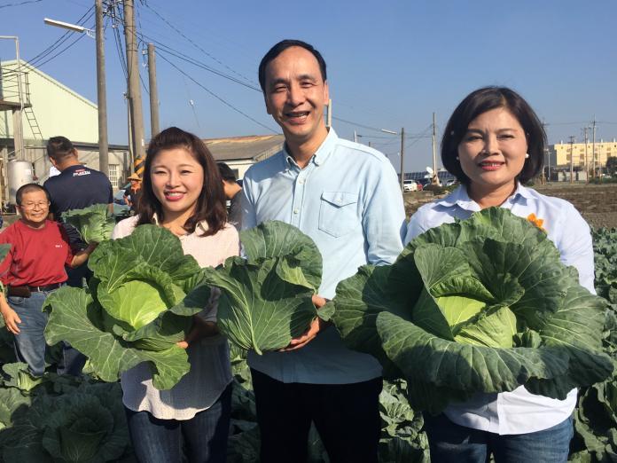採購四百噸高麗菜 與張麗善助農民