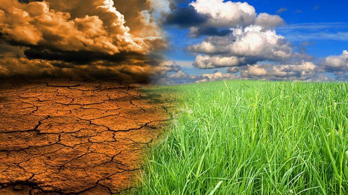 拒絕替全球空氣買單 巴西新環長:將開發亞馬遜雨林
