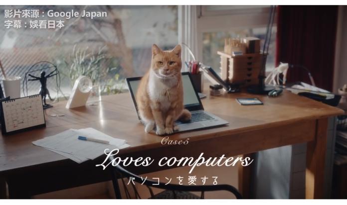 ▲日本 Google Home 廣告以貓奴為發想,創意廣告深深打中貓奴心。(圖 / 翻攝自臉書「娛看日本」)