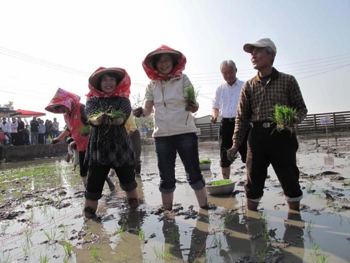 總統蔡英文走訪崑濱伯,意外找到兩人十年前下田的照片(圖/翻自蔡英文臉書,2019,01,19)