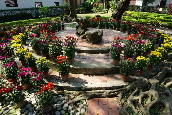 過年就到林家花園 賞花、聆樂、玩傳藝!