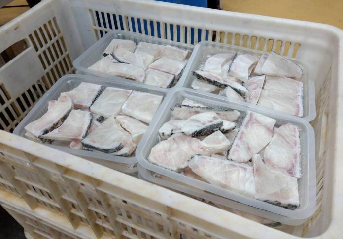 ▲高雄在地優質漁產品經整裝後,上月外銷金額近3億元。(圖/記者黃守作攝,2019.02.13)