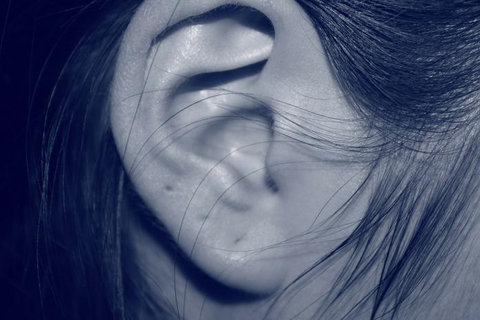 食藥署表示,發現聽力退化,就應該配戴助聽器,才能避免聽覺中樞退化,以免讓聽力問題更嚴重。(圖/截取自pixabay)