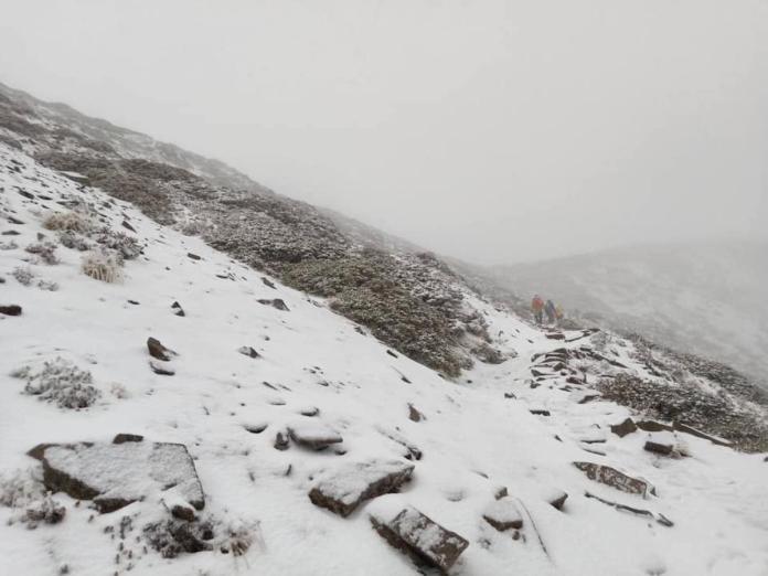 <b>雪山</b>下雪了!積雪達10公分 登山客忍寒風驚呼:太美了