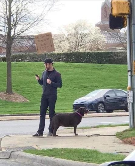 美國男子撿到狗,在路邊舉牌為牠找主人。(圖/Lyndsay Tapases/Twitter)