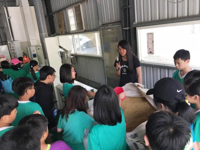 <br> ▲農業系學生向小朋友細心講解碾米過程。(圖/記者陳雅芳攝,2019.03.30)