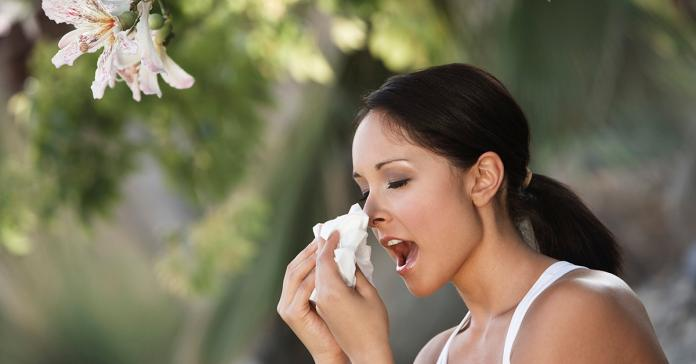 初春鼻過敏發威 專業醫師談防治之道