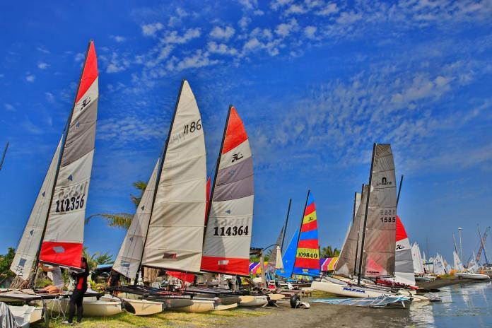 <b>大鵬灣</b>遊艇帆船賽今登場 三屆奧運風浪板選手張浩參賽