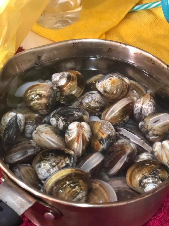 ▲原PO買好市多蛤蜊回家,冷藏一周後竟然還是活的。(圖/翻攝自「Costco好市多 商品經驗老實說」)