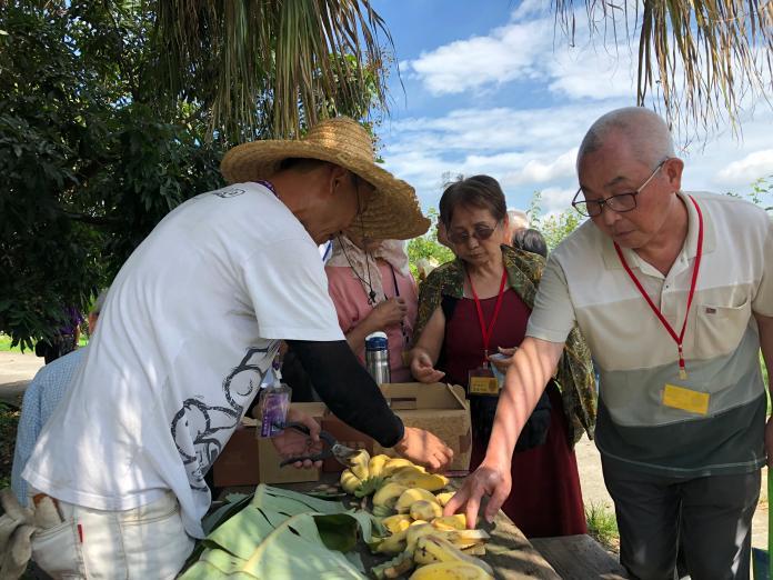 <br> ▲果園負責人李大哥特地準備了園內生產的香蕉給老人家們品嘗。(圖/記者陳雅芳攝,2019.06.07)