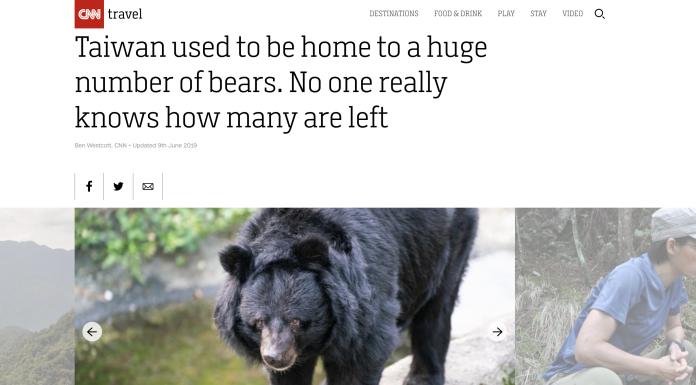 ▲CNN以頭條報導台灣黑熊。(圖/截自CNN網頁)