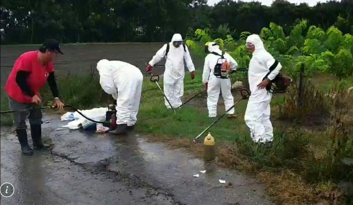 <br> ▲台東縣政府在今天上午直接進入銷毀的SOP程序。(圖/台東縣政府提供)