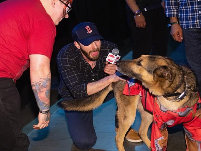 克里斯伊凡出席<b>動漫展</b> 受訪時竟跳下舞台擁抱粉絲狗狗