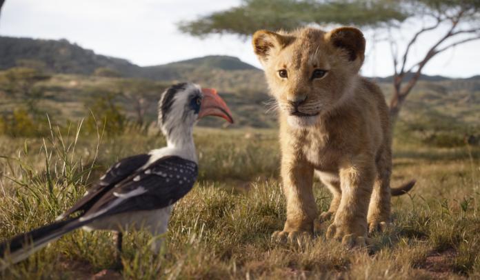 ▲《獅子王》(圖/迪士尼)