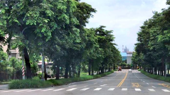 高雄市大坪頂一處分隔島「枝葉繁茂」,民眾開車找不到紅綠燈在哪裡。(圖 / 翻攝公民割草行動臉書)