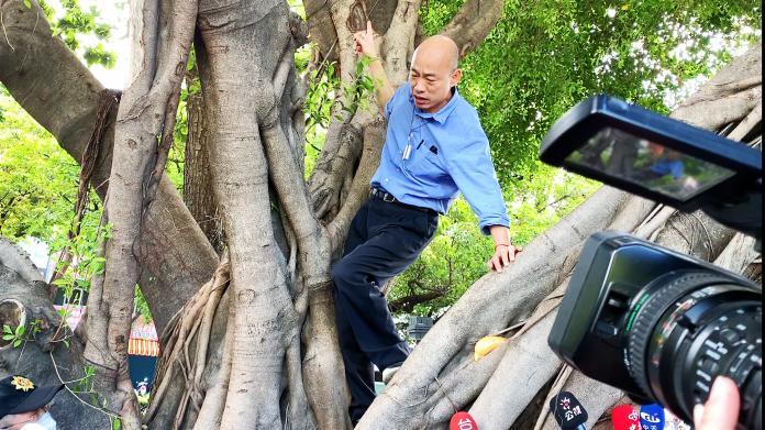 韓國瑜攀到樹上,檢查有無樹洞孳生病媒蚊的可能。 (圖/記者郭俊暉攝)