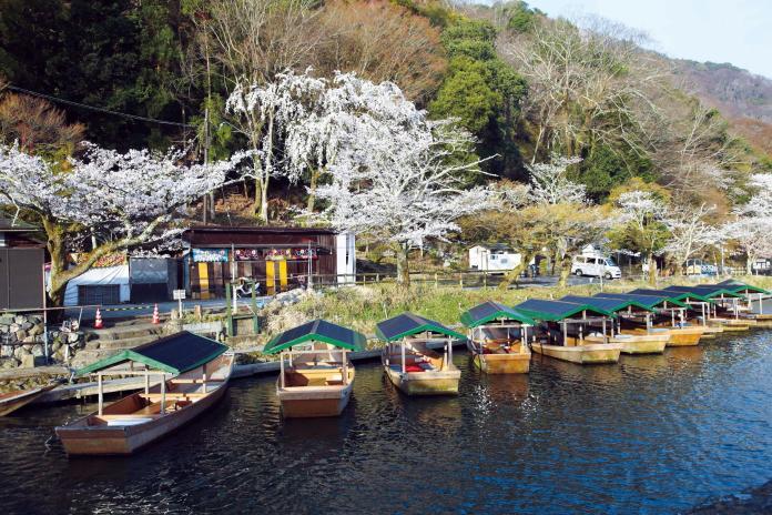 ▲充滿歷史文化及藝術美學的京都一直是台灣人赴日旅遊目的地的熱門選擇,每次造訪都有不同驚喜發生。(圖/福田美術館)