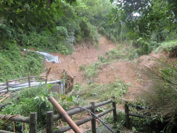 首重安全 中市大坑1、3號登山步道崩塌暫封閉