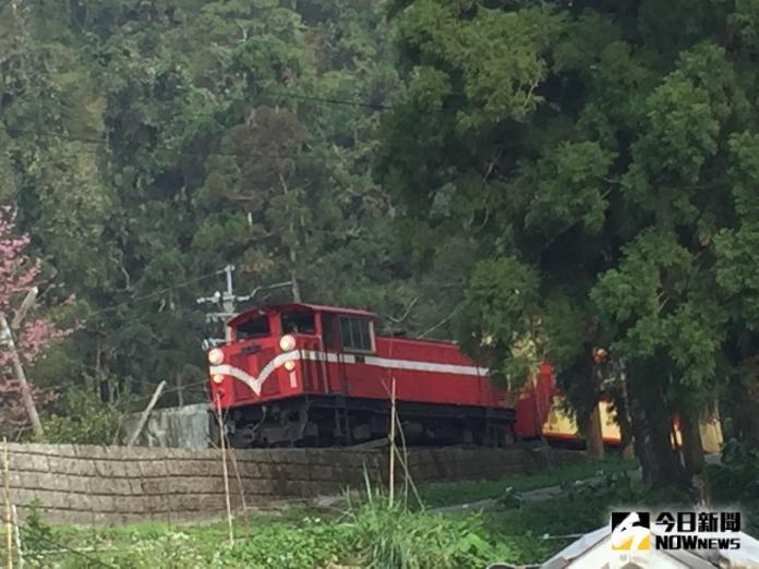 受利奇馬颱風雨量影響 阿里山鐵路明天預警性停駛