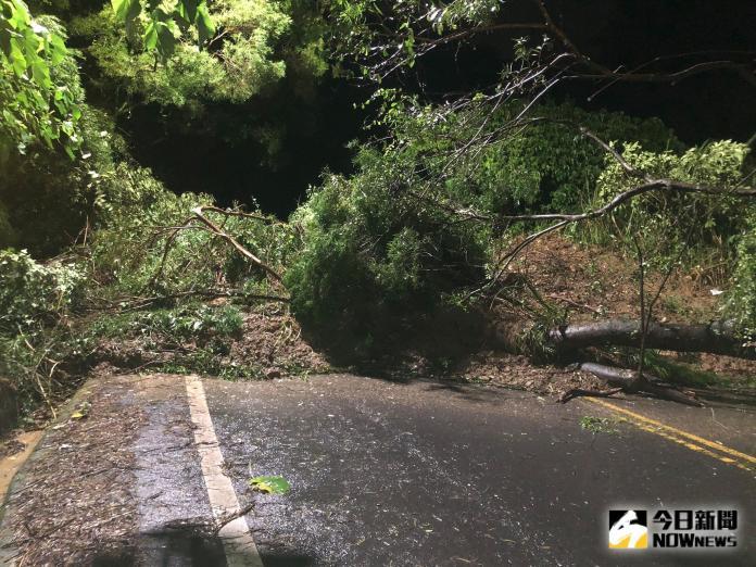 ▲彰化一夜大雨導致路樹倒塌。(圖/記者陳雅芳翻攝)