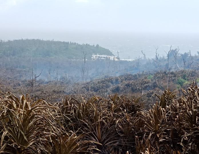 ▲綠島森林大火現場今日上午經空勤直升機灑水後,現場已無火。(圖/台東林管處提供)