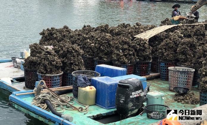 白鹿颱風來襲 雲林縣府籲:農林漁牧業做好防範