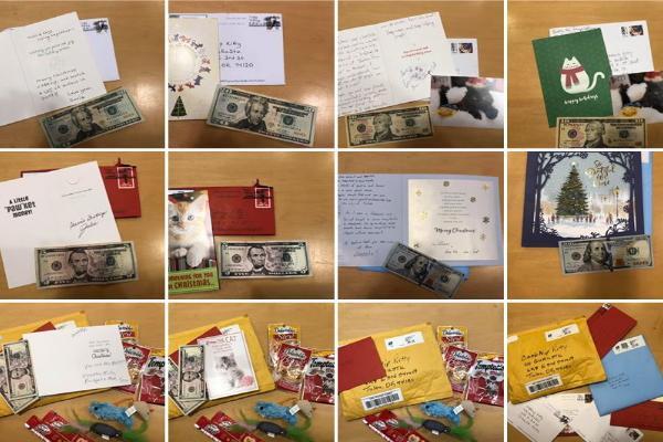 <br> 牠的事蹟被四處散播,於是許多民眾寫卡片向牠致意並附上各種金額的摳摳!(圖/FB@CASHnip Kitty)