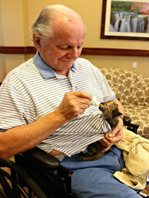 <br> 老人藉由照顧小貓讓生活頓時有了重心,而且看著毛茸茸的毛孩心情比較開心!(圖/FB@Pima Animal Care Center)