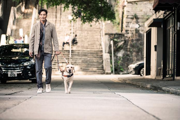 今年最暖心療癒的狗狗電影 成香港民眾溫暖的避風港