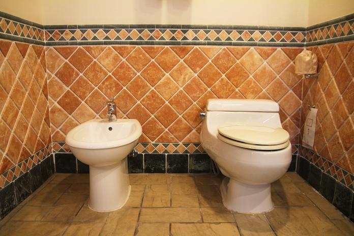 飯店居然有兩個馬桶 網友秒懂:長知識了