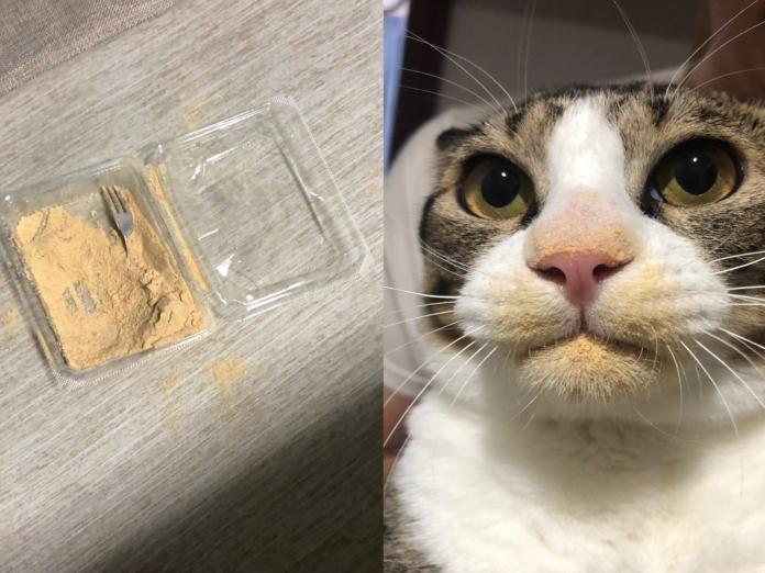 喵星人偷吃沒擦嘴證據塗滿臉 貓咪:朕補粉啦!