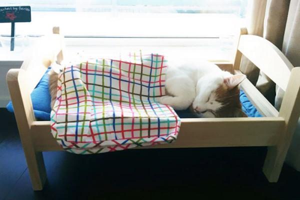 <br> 連鎖傢俱這款娃娃床深受不少貓咪喜愛,由於娃娃床的尺寸很適合貓咪使用,因此也成為不少貓奴的必買清單之一(圖/Bored Panda)