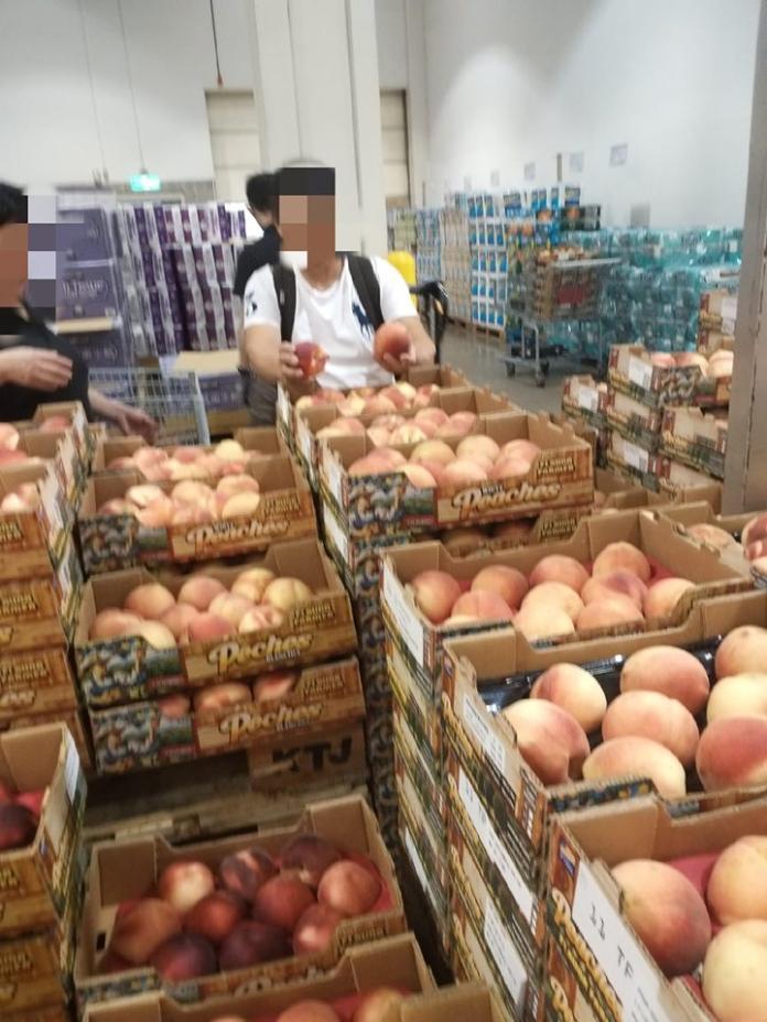 <br> ▲一位穿著名牌 POLO 衫的大叔拿起盒中的水蜜桃,把外表有損傷的水果換到別盒,再把優良品放進自己的水果盒中,「彷彿大風吹一樣」。(圖/翻攝自《 Costco 好市多 商品經驗老實說》)