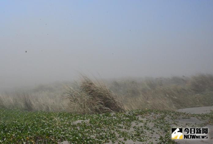 濁水溪揚塵治理成效視察 張麗善:確保鄉親生活品質