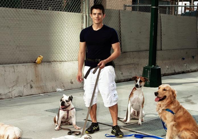 o▲史都華靠著訓練狗,年收300 萬。(圖/翻攝自 Ryan For Dogs )